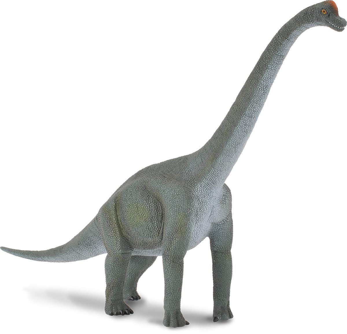 Collecta Фигурка Брахиозавр collecta дилофозавр синий l 12 9 см