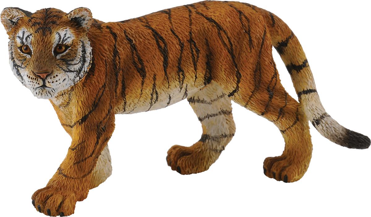 Collecta Фигурка Детеныш сибирского тигра ярость тигра