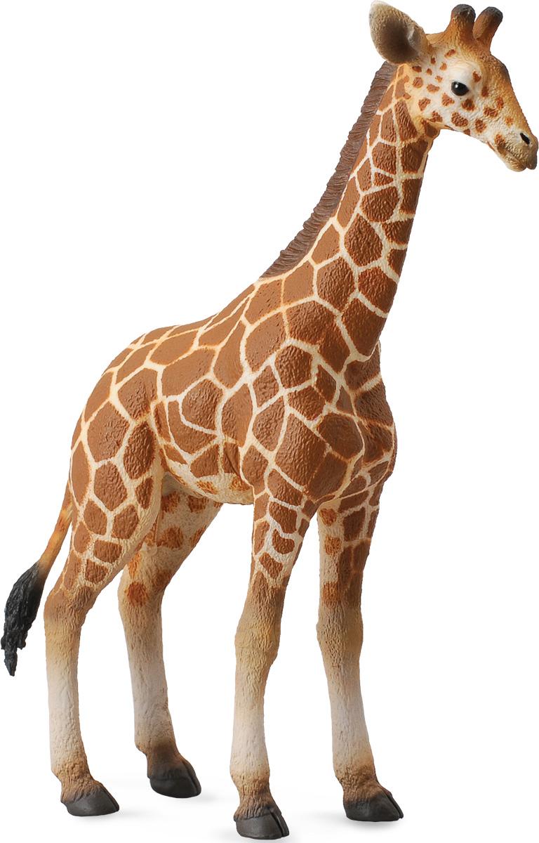 Collecta Фигурка Жеребенок сетчатого жирафа игровые фигурки gulliver collecta двугорбый верблюд l