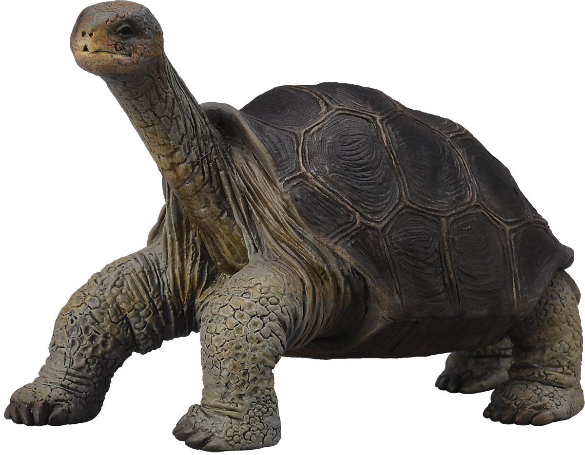 Collecta Фигурка Абингдонская слоновая черепаха