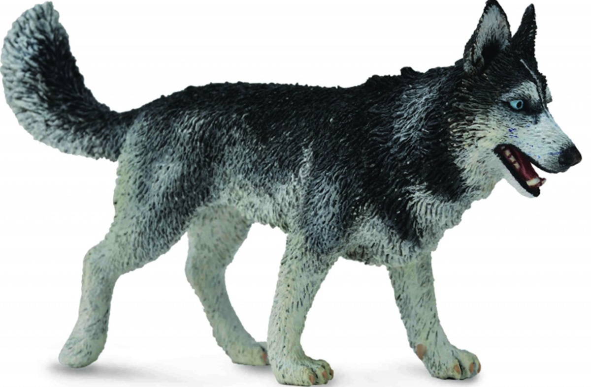Collecta Фигурка Сибирский хаски мягкие игрушки hansa собака породы сибирский хаски 40 см