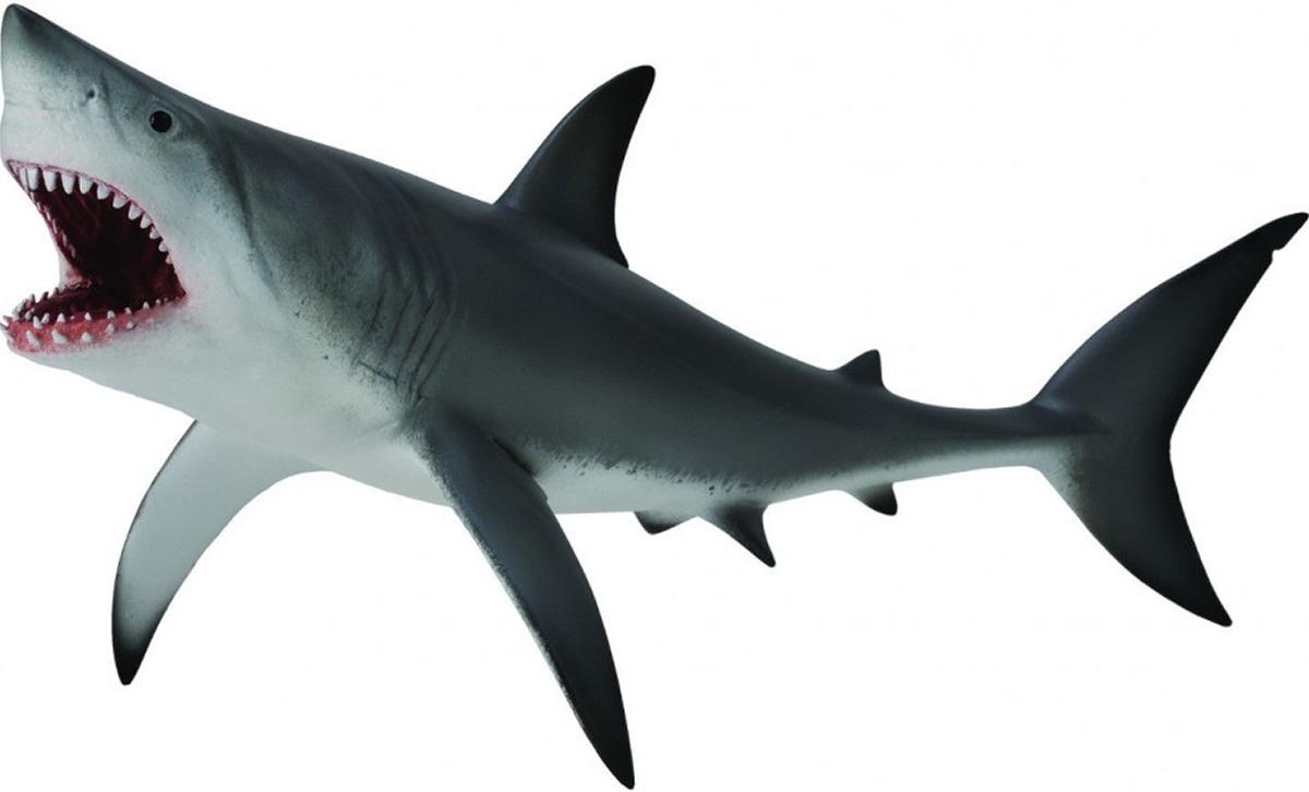 Collecta Фигурка Акула большая белая акула большая белая xl collecta