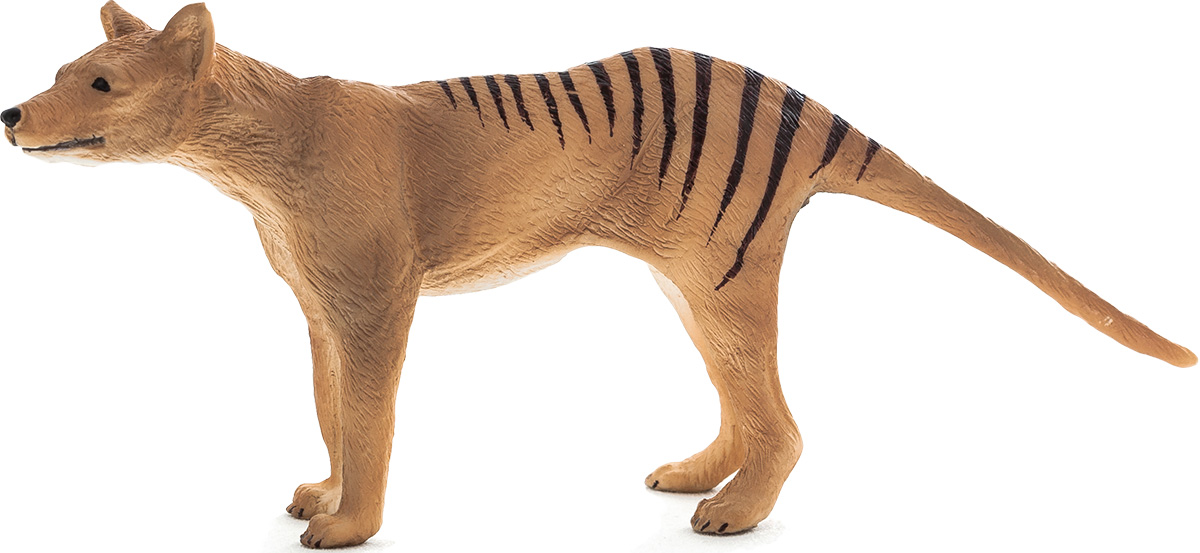 Collecta Фигурка Тасманийский волк игровые фигурки gulliver collecta лев африканский l