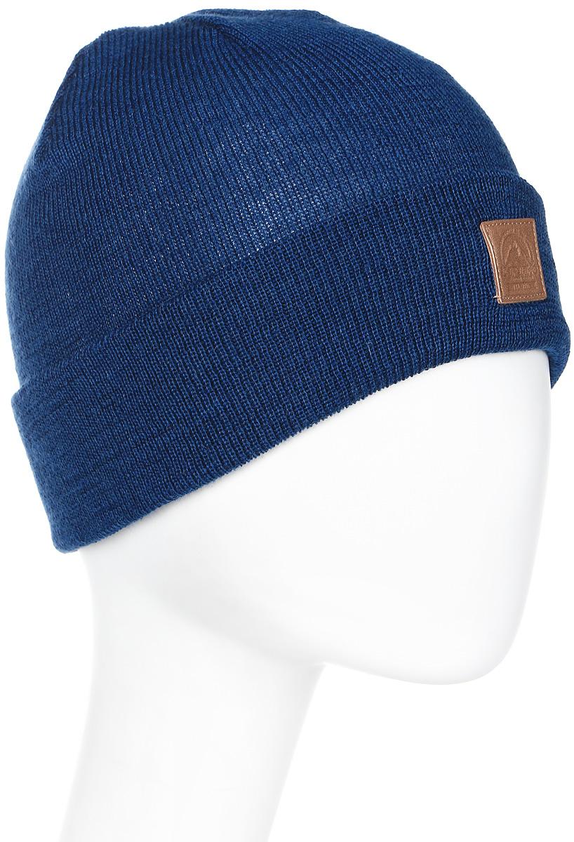 Шапка мужская Icepeak, цвет: синий. 858820617IV-365. Размер универсальный