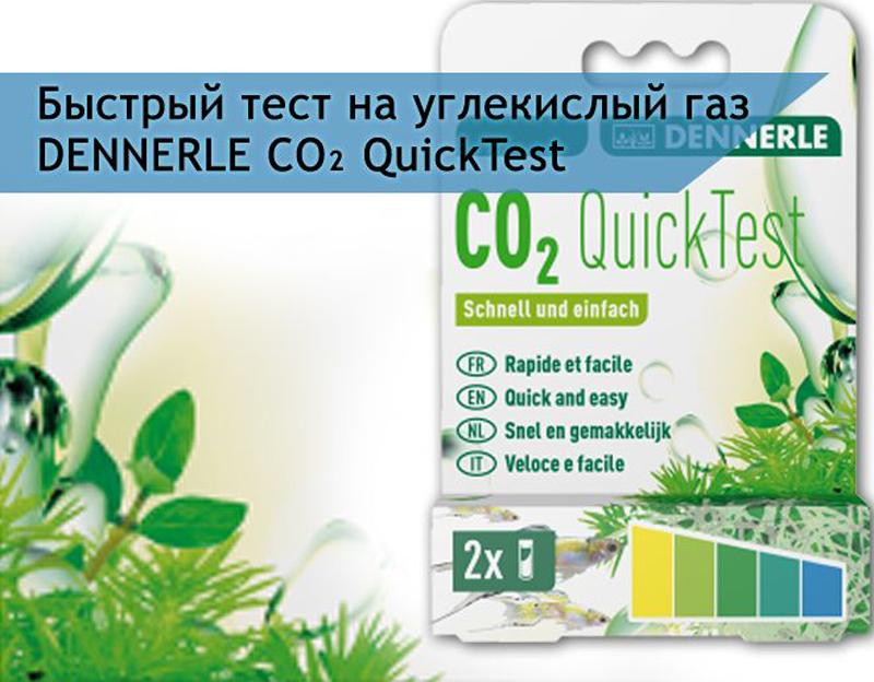 Тест для контроля содержания уровня СО2 в аквариуме Dennerle CO2 QuickTest, быстрыйDEN3106Тест Dennerle CO2 QuickTest предназначен для быстрого контроля уровня содержания СО2 в аквариумной воде. Результат виден через несколько секунд.