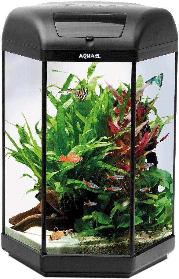 Aквариум Aquael  Нexa Set Ll 60 , LT 1 x 6W Sunny, 60 л - Аквариумы и террариумы