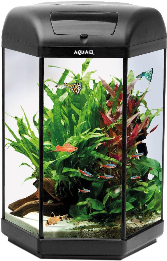 Aквариум Aquael  Нexa Set Ll 20 , LT 1 x 3W Sunny, 20 л - Аквариумы и террариумы