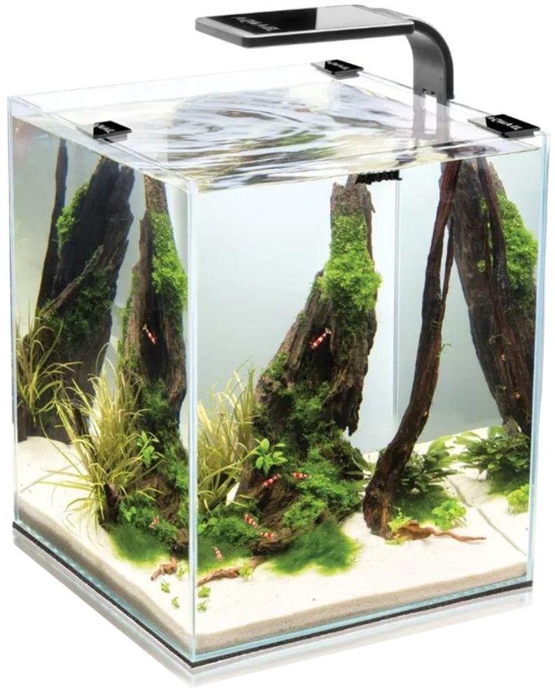 Aквариум Aquael Shrimp Set Smart Led Plant Ll 10, с освещением, цвет: черный, 10 л114955Aквариум Aquael Shrimp Set Smart Led Plant Ll 10 изготовлен из высокопрозрачного стекла (4 мм), швы проклеены силиконовым герметиком с высокой степенью адгезии и без присутствия в составе дополнительных добавок, что является полностью безопасным для населения аквариума. В комплекте к аквариуму идет подложка из полипропилена , что весьма удобно и практично. Покровное стекло предотвратит выскакивание гидробионтов за пределы аквакомплекса, также уменьшит испарения и защитит от попадания посторонних предметов. Удобный крепеж с помощью пластиковых уголков-неоспоримое удобство при обслуживании аквариума. Выверенные размеры покровного стекла позволят с легкостью разместить оборудование и покормить рыбок, а также осуществлять еженедельные процедуры по уходу за аквариумом. Освещение: Современный LED светильник LEDDY SMART (цветовая температура 8000 К, мощность 6 Вт) идеален для роста длиностебельных растений, мхов, папоротников. Удобный крепеж надежно фиксирует светильник на стенке, без возможности опрокидывания.Стильный, минималистичный дизайн светильника не отвлекает взгляд от внутреннего оформления, но в то же время, обладает достаточной мощностью для создания уголка подводного сада в таком небольшом объеме.Фильтрация: Универсальный фильтр Pat-Mini с мелкопористой губкой идеально очистит воду от механических взвесей и позволит поддерживать биологическое равновесие. Возможность подключения насадки для аэрации -альтернатива воздушному компрессору.Регулировка потока по силе и по направлению позволит распределить равномерно распределить выходную струю по всему объему.В комплекте с фильтром 2 вида крепежа:-с помощью присосок-с помощью Г-образного держателя.