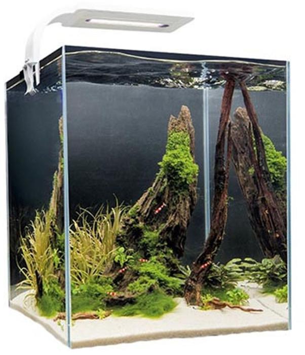 Aквариум Aquael Shrimp Set Smart Led Plant Ll 20, с освещением, цвет: белый, прозрачный, 20 л114958Аквариум Aquael Shrimp Set Smart Led Plant Ll 20 изготовлен и стекла высокой прозрачности и склеен специализированным прозрачным силиконом, который гарантирует прочность и герметичность швов. Полипропиленовая подложка, на которую устанавливается аквариум, сглаживает неровности поверхности и помогает равномерному распределению веса снаряженного комплекса. Аквариум оборудован покровным стеклом, которое предотвращает самовольное покидание аквариума его обитателями, а также снижает испарение воды. Особенностью обновленного Aquael Shrimp Set Smart Led Plant Ll 20 является система крепежа покровного стекла - оно словно парит над аквариумом, что придает всему комплексу особое очарование. Плоская форма обновленного светильника Leddy Smart придает элегантность всему аквариумному комплексу. А излучаемый свет c цветовой температурой 8000 K способствует росту растений благодаря правильно подобранному спектру, а также подчеркивает красоту натурального окраса аквариумных обитателей. Чистота воды обеспечивается миниатюрным фильтром Pat-Mini с внешней губкой, которая безопасна даже для самых маленьких креветок. Температурный режим в аквариуме поддерживается с помощью нагревателя Comfortzone Fix.Комплектация:- Аквариум.- Покровное стекло.- Нагреватель AQSn.- Фильтр Pat-Mini.- LED-светильник.- Полипропиленовая подложка.Размеры аквариума: 26 х 26 х 31 см.