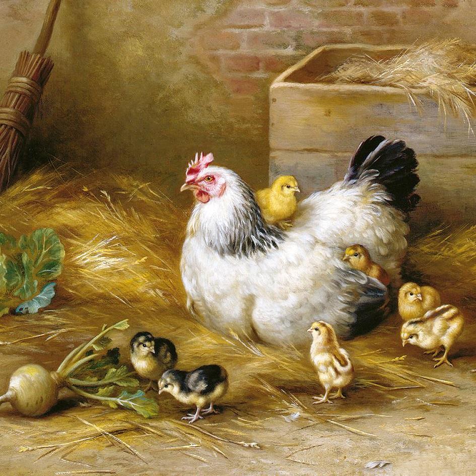 Наволочка декоративная Рапира Семеро цыплят, 45 х 45 см. 2720 настольная игра ranok creative мемо картины 7206