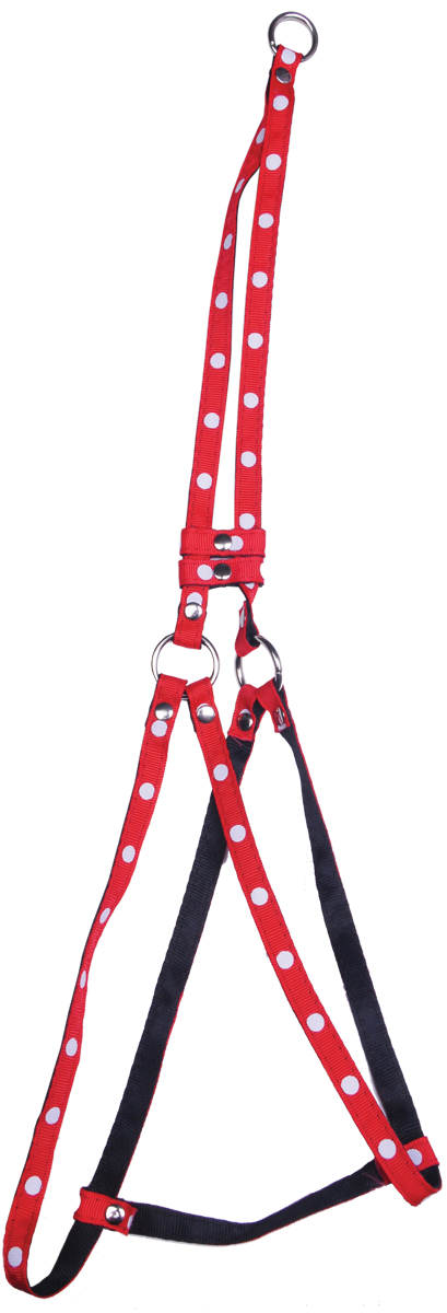 Комплект для животных GLG: шлейка, поводок, цвет: красный, 84-115 смAM827-2-L-R