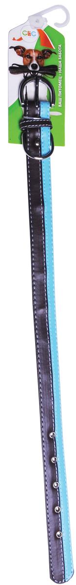 Ошейник для собак GLG, цввет: черный, голубой, 2,54 х 48 смAMG0836-48-BR/B