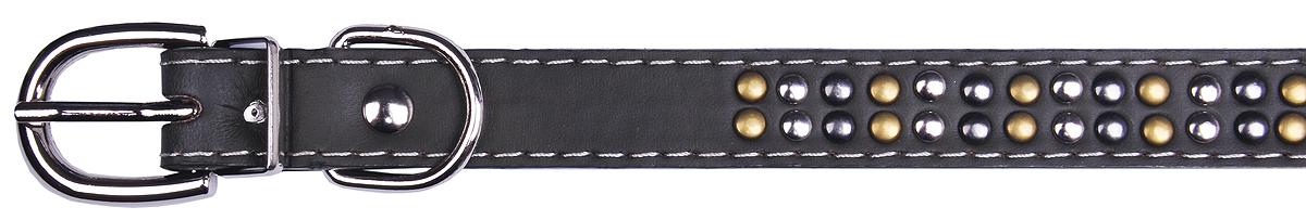 Ошейник для собак GLG, 1,9 х 37 см. AMG0807-36-GAMG0807-36-G
