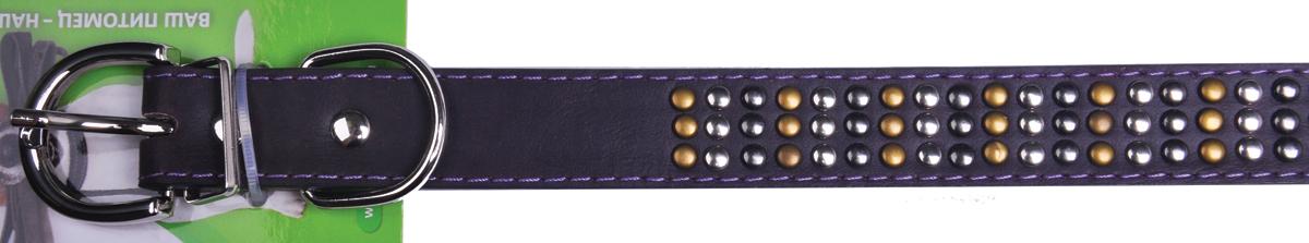 Ошейник для собак GLG, 1,9 х 37 см. AMG0807-36-VAMG0807-36-V