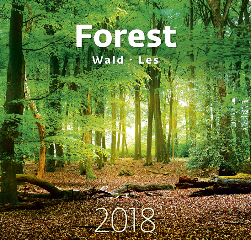 Календарь 2018 (на спирали). Forest printio перекидной календарь а3