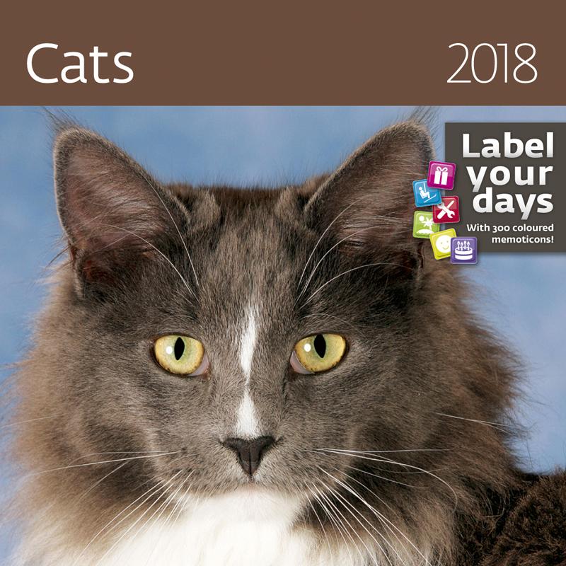 Календарь 2018 (на спирали). Cats (+ наклейки) календарь на 2017 год на спирали retro nostalgia ретро 450 315мм