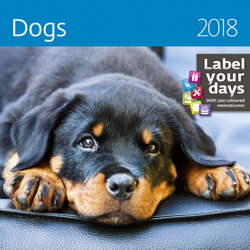 Календарь 2018 (на спирали). Dogs (+ наклейки) альфонс муха календарь настенный на 2018 год эксмо