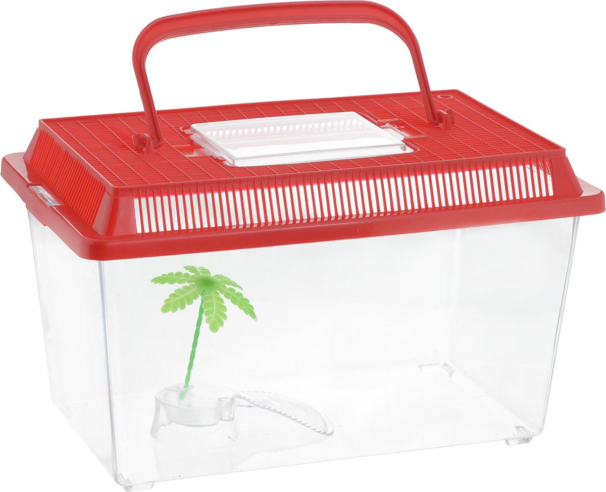 Контейнер-переноска для рептилий Repti-Zoo, цвет: прозрачный, красный, 27 х 17 х 16,8 см83615003_красныйКонтейнер-переноска для рептилий Repti-Zoo изготовлен из прозрачного пластика. Изделие имеет цветную крышку, которая плотно фиксируется с помощью защелок. Мелкие отверстия обеспечивают вентиляцию. На крышке имеется прозрачное окошко для легкого доступа внутрь. Также в контейнере предусмотрена встроенная миска. Для удобной переноски имеется ручка. Контейнер идеально подходит для транспортировки небольших рептилий, например, черепах, ящериц.
