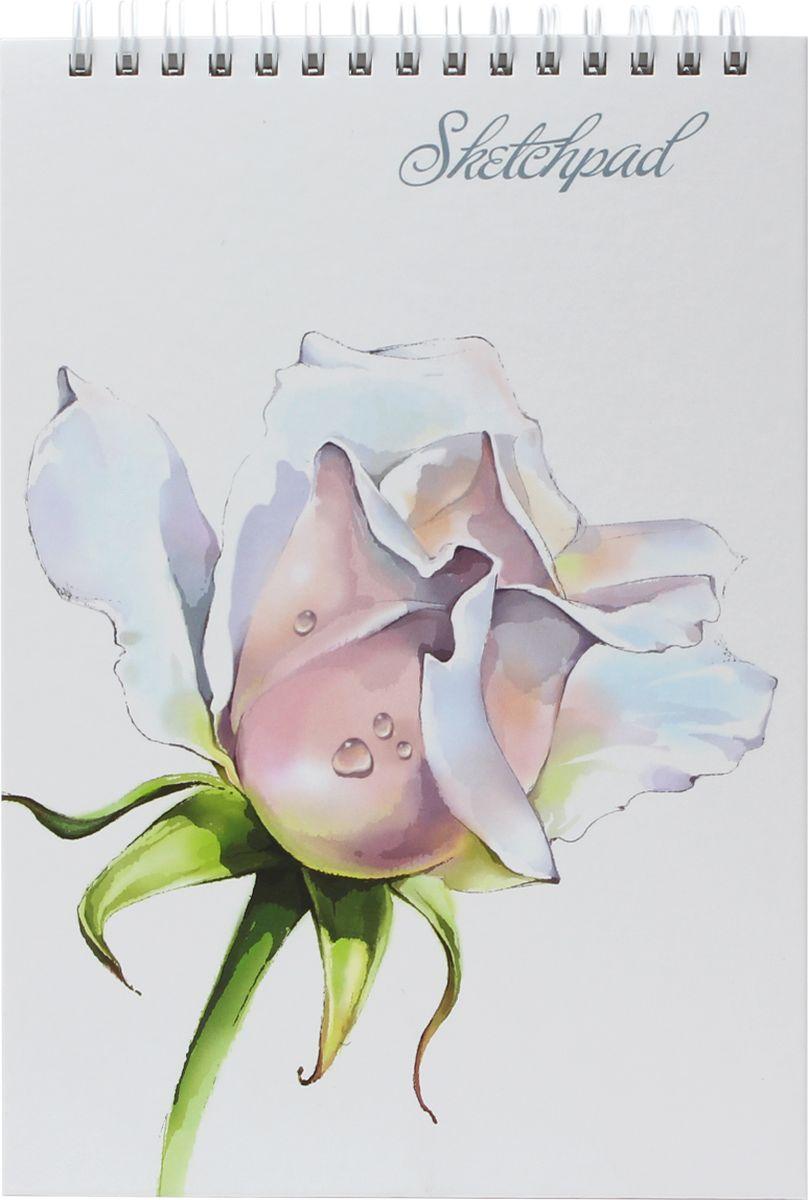 Феникс+ Альбом для эскизов Нежные цветы 60 листов45026Альбом для эскизов.Формат: 142х212 мм.Количество листов: 60.Крепление: гребень.