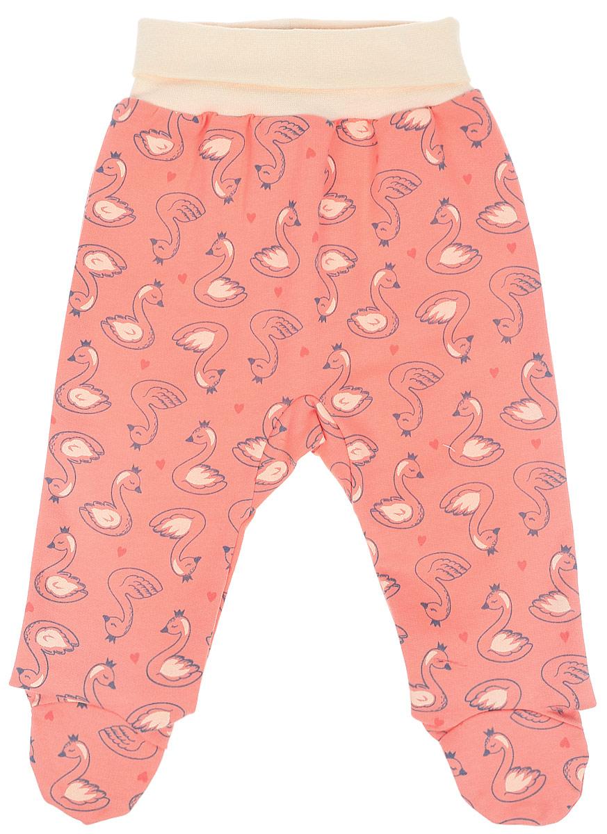 Ползунки для девочки Cherubino, цвет: коралловый. CWN 7623 (156). Размер 56CWN 7623 (156)Ползунки для девочки выполнены из набивного трикотажа с начесом. Модель дополнена мягким комфортным поясом.