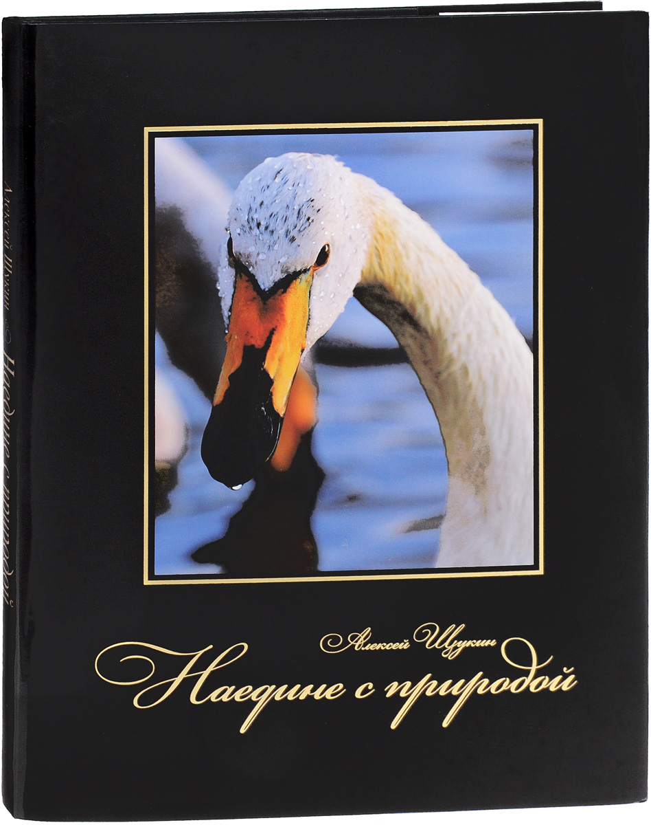 Алексей Щукин Наедине с природой алексей валерьевич палысаев дар