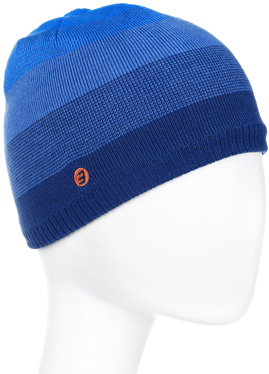 Шапка мужская Icepeak, цвет: синий, голубой. 858813579IV-365. Размер универсальный858813579IV-365