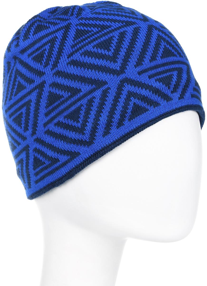 Шапка мужская Icepeak, цвет: синий, голубой. 858843579IV-365. Размер универсальный858843579IV-365