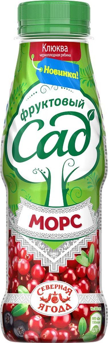 Фруктовый Сад Клюква-Черноплодная рябина морс, 0,3 л соярус напиток соевый сливочный 0 93