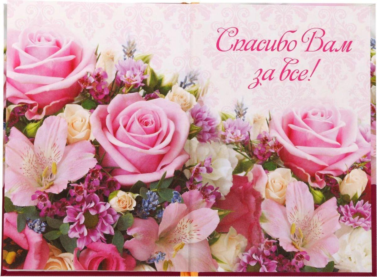 Фото открытка учителю с днем рождения