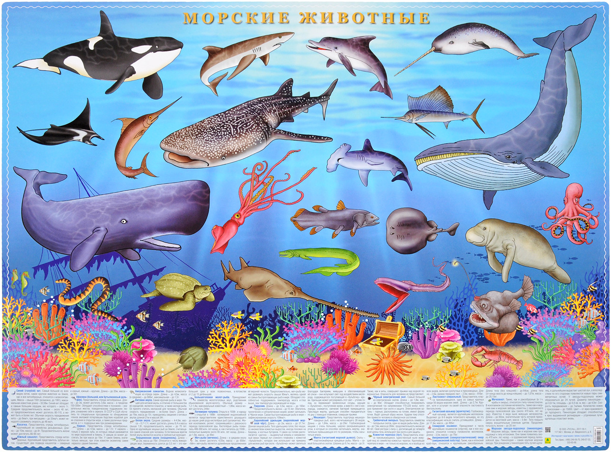 Морские животные арман ландрен морские чудовища