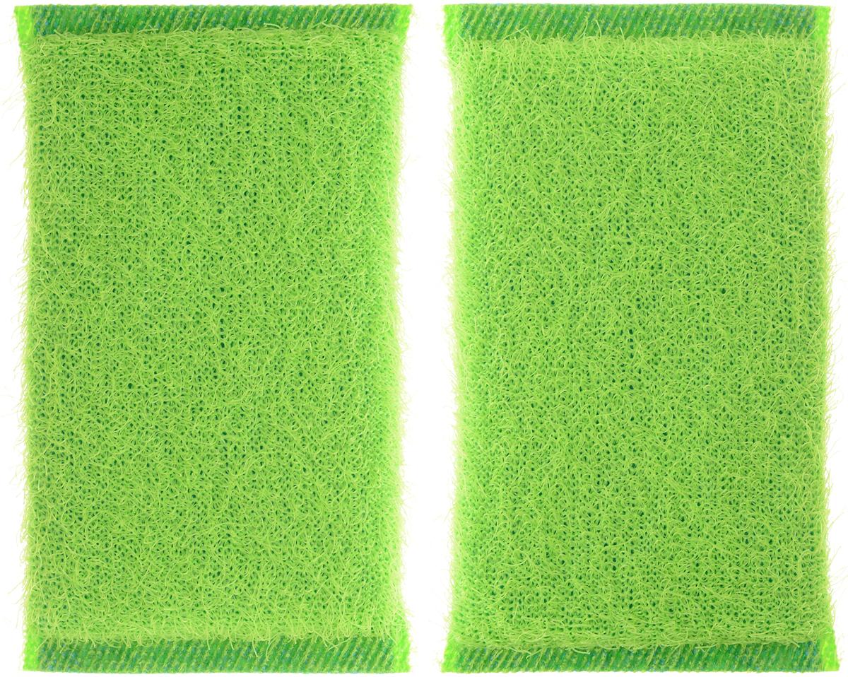 Губка для мытья посуды Хозяюшка Мила Кактус, цвет: зеленый, 2 шт01008-100_зеленыйНабор Хозяюшка Мила Кактус состоит из 2 губок.Губки предназначены для интенсивной чистки и удаления сильных загрязнений спосуды (противни, решетки-гриль, кастрюли). Губки сохраняют чистоту и свежесть даже после многократного применения, а ихэргономичная форма удобна для руки. Не рекомендуется использовать для посуды с антипригарным покрытием. Размер губки: 12 х 2 х 8 см.