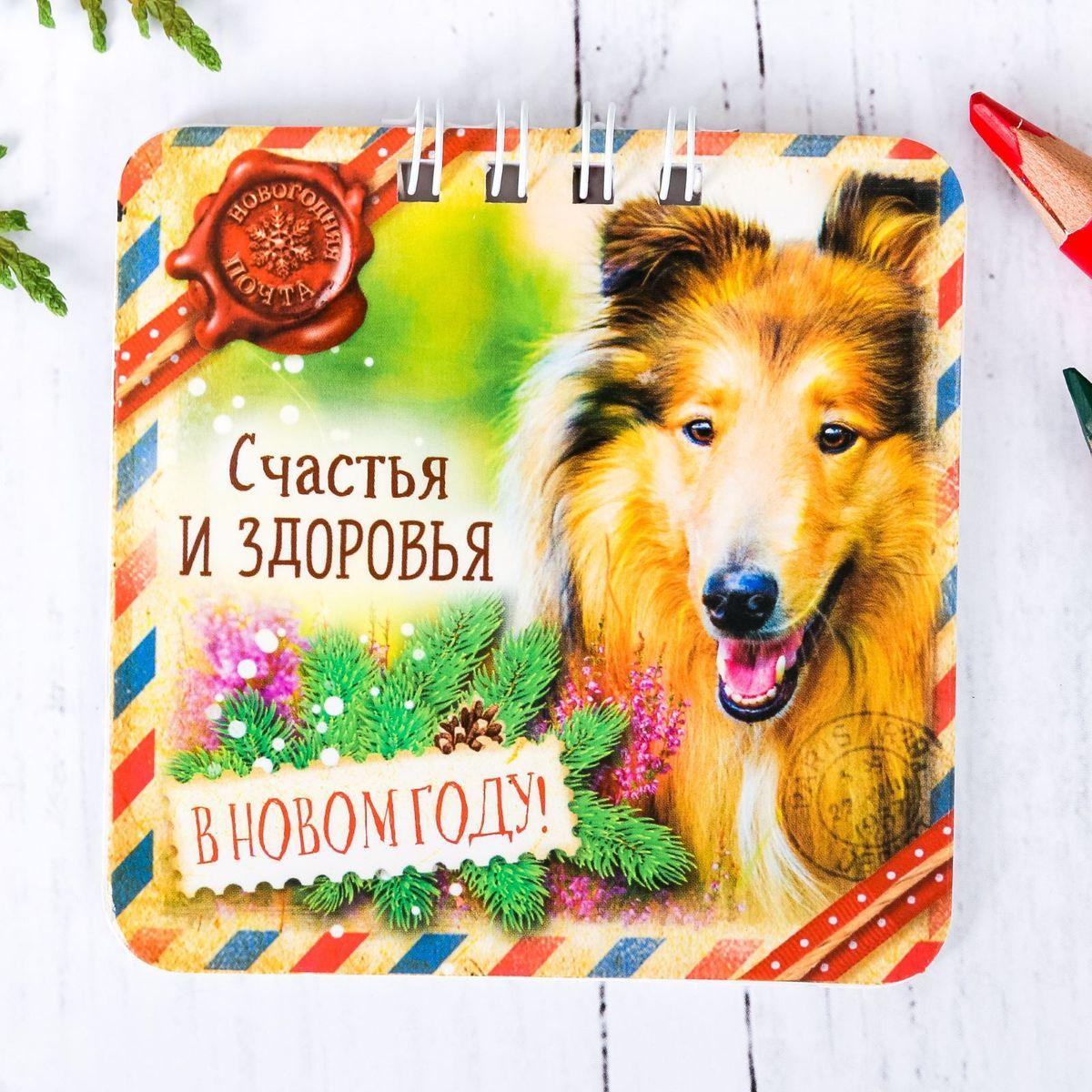 Sima-land Блокнот Счастья и здоровья открытка прорастайка sima land желаю крепкого здоровья