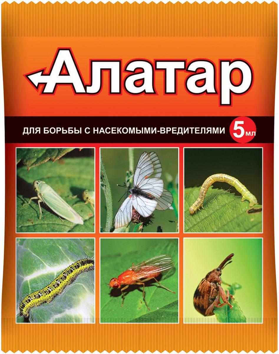 """""""Алатар"""" - биоактивный садовый инсектицид на основе циперметрина и малатиона. Применяется против многих видов огородных вредителей, преимущественно в пики их размножения или в моменты внезапных масштабных нашествий растительноядных насекомых на приусадебные участки, крупные сельскохозяйственные угодья. Может применяться как против одного конкретного вида вредителей, так и в форме комплексной защиты насаждений от любых паразитарных посягательств.Товар сертифицирован."""
