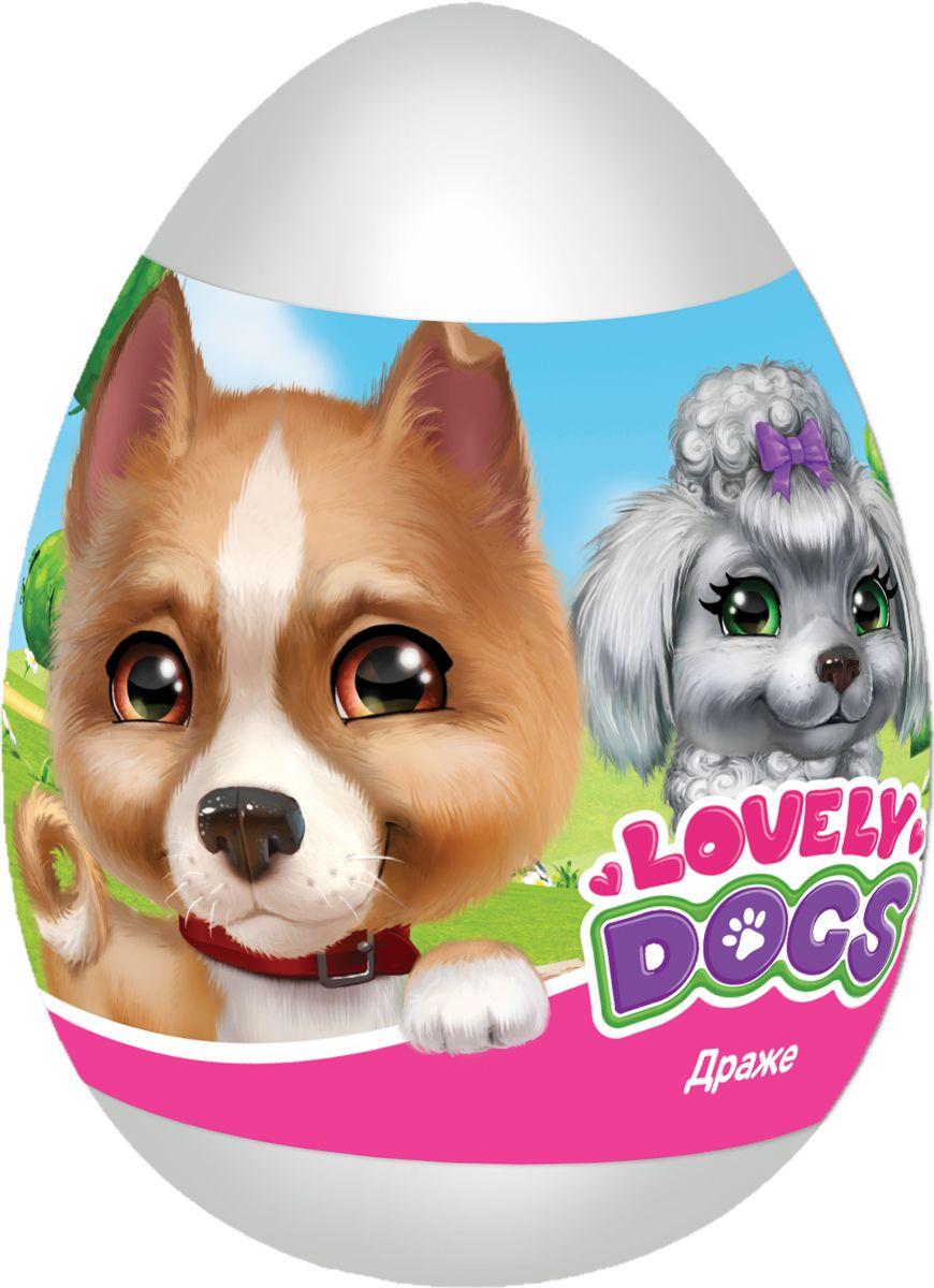 Конфитрейд Lovely dogs фруктовое драже с игрушкой, 20 гУТ22096Всего 8 игрушек в коллекции.
