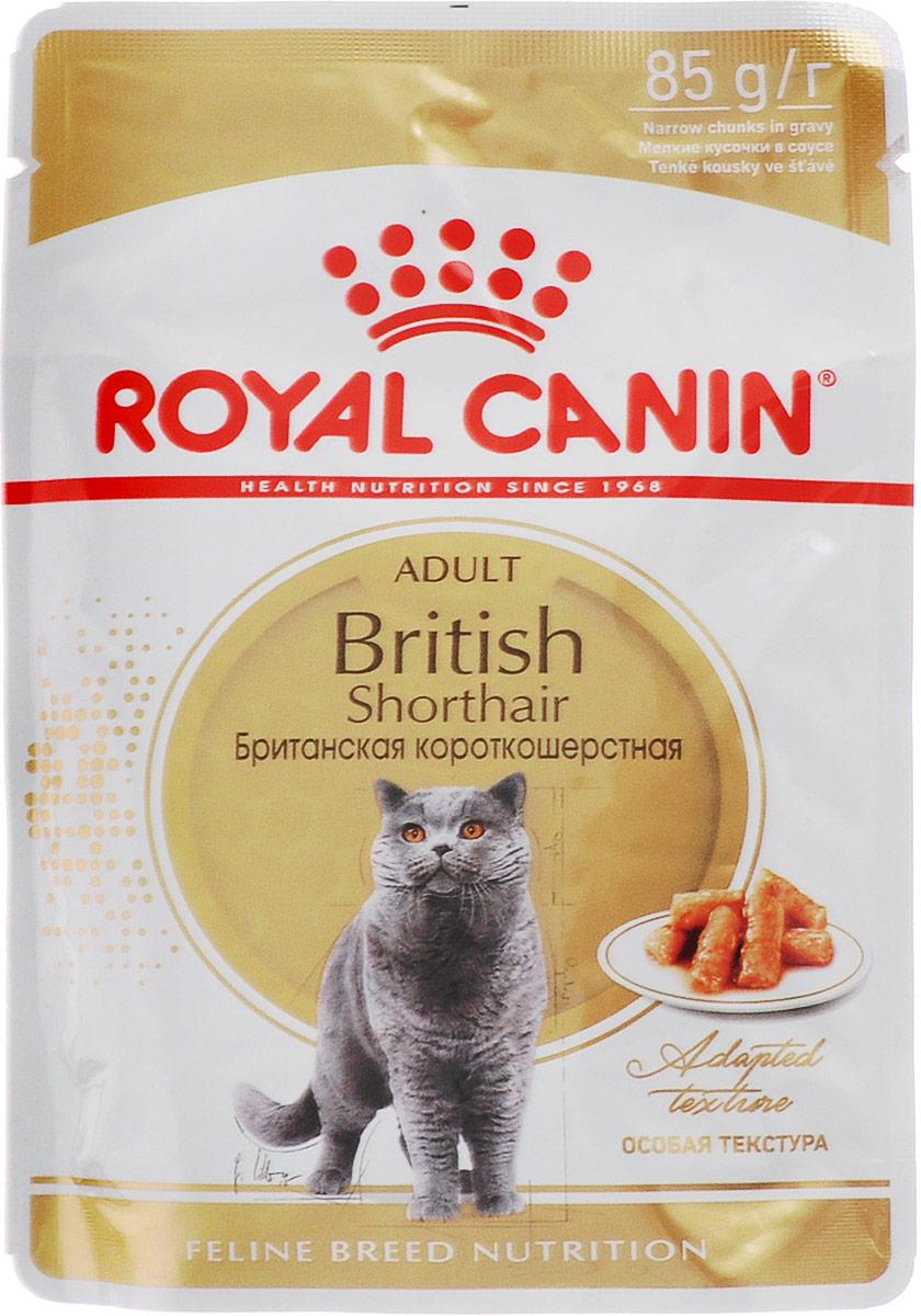 Консервы Royal Canin British Shorthair Adult, для кошек британской породы в возрасте старше 12 месяцев, мелкие кусочки в соусе, 85 г60581Консервы Royal Canin British Shorthair Adult специально созданы для британских короткошерстных кошек в возрасте старше 12 месяцев. Британская короткошерстная кошка родом из Великобритании, что явствует из названия породы.Поддержание оптимальной формы.Мощные и коренастые, британские короткошерстные кошки испытывают повышенную нагрузку на суставы в сравнении с кошками меньшего веса.Крупное сердце - риск для здоровья.Эта порода имеет предрасположенность к сердечным заболеваниям. Соблюдение диетических рекомендаций - залог здоровья сердца!Умеренное содержание энергии.У британской короткошерстной кошки мощное плотное телосложение, вследствие чего повышается нагрузка на суставы. Продукт British Shorthair Adult с адаптированным содержанием жира для поддержания оптимального веса.Здоровье мочевыделительной системы. Помогает поддерживать здоровье мочевыделительной системы.Здоровье кожи и шерсти.Помогает поддерживать здоровье кожи и шерсти. Состав: мясо и мясные субпродукты, злаки, рыба и рыбные субпродукты, субпродукты растительного происхождения, экстракты белков растительного происхождения, масла и жиры, минеральные вещества, углеводы.Добавки (в 1 кг): витамин D3 265 ME, железо 8 мг, йод 0,09 мг, марганец 2,4 мг, цинк: 24 мг. Товар сертифицирован.Уважаемые клиенты! Обращаем ваше внимание на то, что упаковка может иметь несколько видов дизайна. Поставка осуществляется в зависимости от наличия на складе.