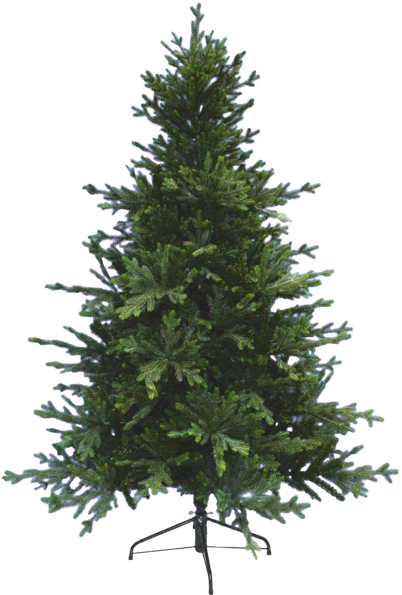 Ель искусственная Beatrees Calipso, цвет: зеленый, высота 2,2 м1030622Искусственная ель Beatrees Calipso - это прекрасный вариант для оформления интерьера к Новому году. Остается только собрать и нарядить красавицу. Она абсолютно безопасна, удобна в сборке и не занимает много места при хранении. Ель состоит из верхушки, сборного ствола и устойчивой подставки. Ель быстро и легко устанавливается. Инструкция в комплекте.Сказочно красивая новогодняя елка украсит интерьер вашего дома и создаст теплую и уютную атмосферу праздника. Откройте для себя удивительный мир сказок и грез. Почувствуйте волшебные минуты ожидания праздника, создайте новогоднее настроение вашим дорогим и близким.