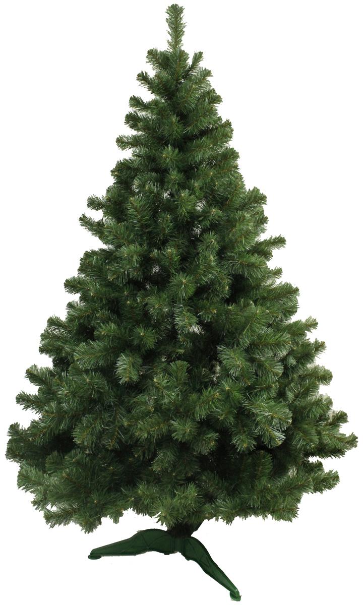 Ель искусственная Morozco Клеопатра, цвет: зеленый, высота 1,8 м1918Искусственная ель Клеопатра - прекрасный вариант для оформления вашего интерьера к Новому году. Такие деревья абсолютно безопасны, удобны в сборке и не занимают много места при хранении.Ель состоит из верхушки, ствола и устойчивой подставки. Ель быстро и легко устанавливается и имеет естественный и абсолютно натуральный вид, отличающийся от своих прототипов разве что совершенством форм и мягкостью иголок.Еловые иголочки не осыпаются, не мнутся и не выцветают со временем. Полимерные материалы, из которых они изготовлены, нетоксичны и не поддаются горению. Ель Morozco обязательно создаст настроение волшебства и уюта, а также станет прекрасным украшением дома на период новогодних праздников.