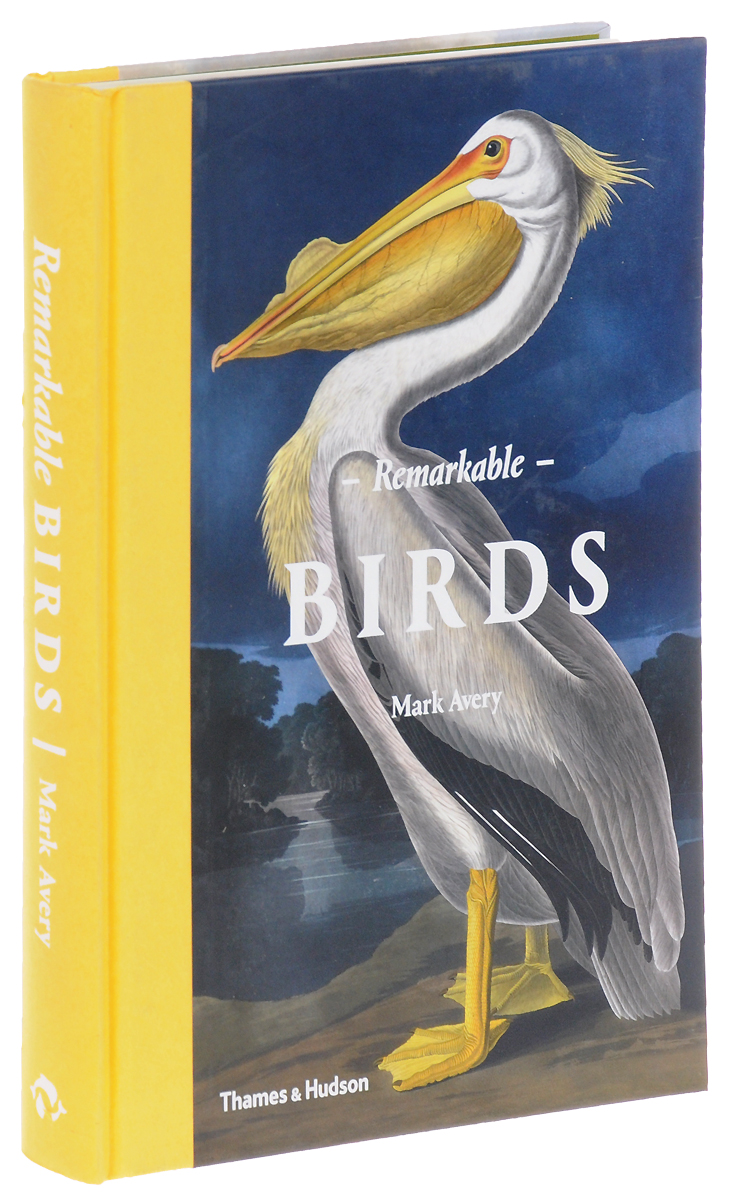 Remarkable Birds birds of the chesapeake bay – paintings by john w taylor with natural histories and journal notes by the artist