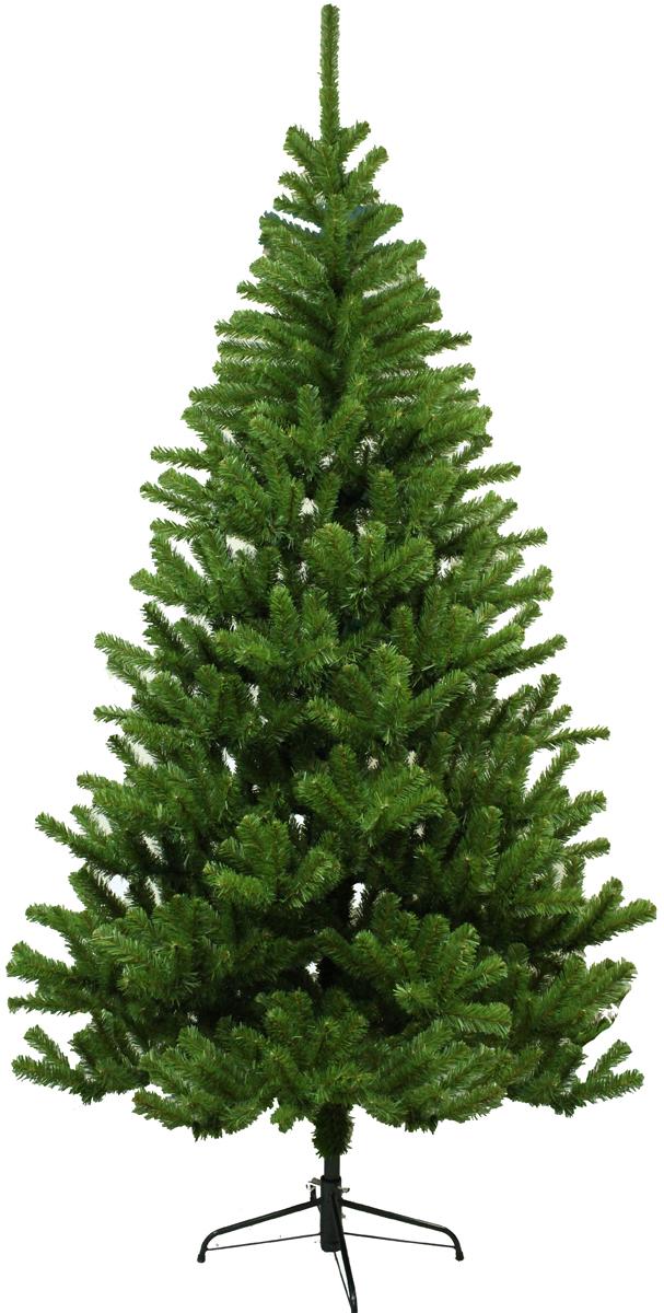 Ель искусственная Morozco Московская, цвет: зеленый, высота 2,1 м0321Искусственная ель Московская - прекрасный вариант для оформления вашего интерьера к Новому году. Такие деревья абсолютно безопасны, удобны в сборке и не занимают много места при хранении.Ель состоит из верхушки, ствола и устойчивой подставки. Ель быстро и легко устанавливается и имеет естественный и абсолютно натуральный вид, отличающийся от своих прототипов разве что совершенством форм и мягкостью иголок.Еловые иголочки не осыпаются, не мнутся и не выцветают со временем. Полимерные материалы, из которых они изготовлены, нетоксичны и не поддаются горению. Ель Morozco обязательно создаст настроение волшебства и уюта, а также станет прекрасным украшением дома на период новогодних праздников.