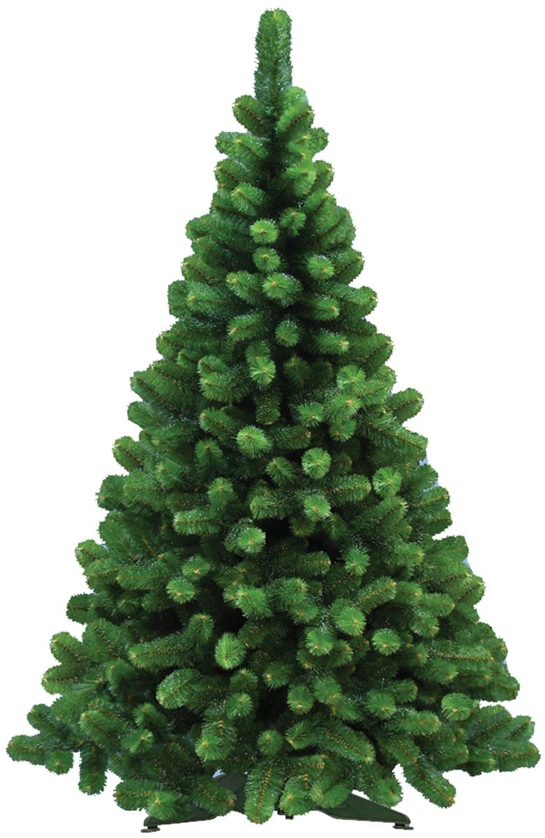 Ель искусственная Morozco Сказка с инеем, цвет: зеленый, высота 1,2 м3212Искусственная ель Сказка с инеем - прекрасный вариант для оформления вашего интерьера к Новому году. Такие деревья абсолютно безопасны, удобны в сборке и не занимают много места при хранении.Ель состоит из верхушки, ствола и устойчивой подставки. Ель быстро и легко устанавливается и имеет естественный и абсолютно натуральный вид, отличающийся от своих прототипов разве что совершенством форм и мягкостью иголок.Еловые иголочки не осыпаются, не мнутся и не выцветают со временем. Полимерные материалы, из которых они изготовлены, не токсичны и не поддаются горению. Ель Morozco обязательно создаст настроение волшебства и уюта, а так же станет прекрасным украшением дома на период новогодних праздников.