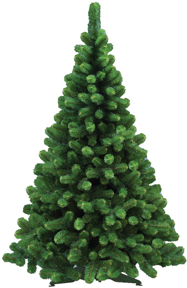 Ель искусственная Morozco Сказка с инеем, цвет: зеленый, высота 1,5 м3215Искусственная ель Сказка с инеем - прекрасный вариант для оформления вашего интерьера к Новому году. Такие деревья абсолютно безопасны, удобны в сборке и не занимают много места при хранении.Ель состоит из верхушки, ствола и устойчивой подставки. Ель быстро и легко устанавливается и имеет естественный и абсолютно натуральный вид, отличающийся от своих прототипов разве что совершенством форм и мягкостью иголок.Еловые иголочки не осыпаются, не мнутся и не выцветают со временем. Полимерные материалы, из которых они изготовлены, не токсичны и не поддаются горению. Ель Morozco обязательно создаст настроение волшебства и уюта, а так же станет прекрасным украшением дома на период новогодних праздников.