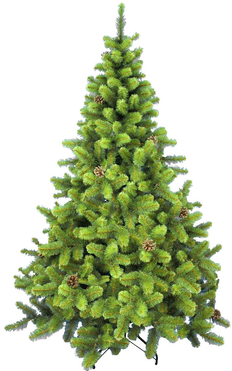 Ель искусственная Morozco Сказка, с набором шишек, цвет: зеленый, высота 1,5 м2615Искусственная ель Сказка с натуральными шишками - прекрасный вариант для оформления вашего интерьера к Новому году. Такие деревья абсолютно безопасны, удобны в сборке и не занимают много места при хранении.Ель состоит из верхушки, ствола, набора шишек и устойчивой подставки. Ель быстро и легко устанавливается и имеет естественный и абсолютно натуральный вид, отличающийся от своих прототипов разве что совершенством форм и мягкостью иголок.Еловые иголочки не осыпаются, не мнутся и не выцветают со временем. Полимерные материалы, из которых они изготовлены, нетоксичны и не поддаются горению. Ель Morozco обязательно создаст настроение волшебства и уюта, а также станет прекрасным украшением дома на период новогодних праздников.