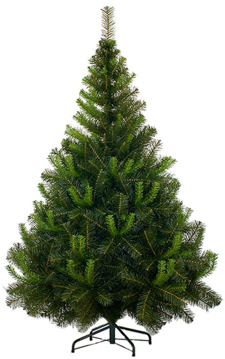 Ель искусственная Morozco Таежная, цвет: зеленый, высота 210 см0221Искусственная ель Morozco Таежная - прекрасный вариант для оформления вашего интерьера к Новому году. Такие деревья абсолютно безопасны, удобны в сборке и не занимают много места при хранении. Ель состоит из верхушки, сборного ствола и устойчивой подставки. Ель быстро и легко устанавливается и имеет естественный и абсолютно натуральный вид, отличающийся от своих прототипов разве что совершенством форм и мягкостью иголок. Для большего объема и пушистости, ветки на верхушке закреплены в хаотичном порядке. Еловые иголочки не осыпаются, не мнутся и не выцветают со временем. Полимерные материалы, из которых они изготовлены, нетоксичны и не поддаются горению. Morozco Таежная обязательно создаст настроение волшебства и уюта, а также станет прекрасным украшением дома на период новогодних праздников.