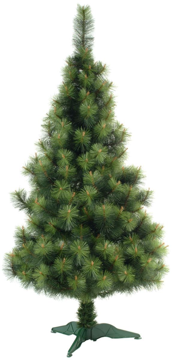 Сосна искусственная Morozco Крымская, напольная, высота 1,2 м0412Искусственная сосна Крымская - прекрасный вариант для оформления вашего интерьера к Новому году. Такие деревья абсолютно безопасны, удобны в сборке и не занимают много места при хранении. Сосна состоит из верхушки, ствола и устойчивой подставки. Для большего объема и пушистости ветки на верхушке закреплены в хаотичном порядке. Сосна быстро и легко устанавливается и имеет естественный и абсолютно натуральный вид, отличающийся от своих прототипов разве что совершенством форм и мягкостью иголок.Сосновые иголочки не осыпаются, не мнутся и не выцветают со временем. Полимерные материалы, из которых они изготовлены, не токсичны и не поддаются горению. Сосна Morozco обязательно создаст настроение волшебства и уюта, а также станет прекрасным украшением дома на период новогодних праздников.