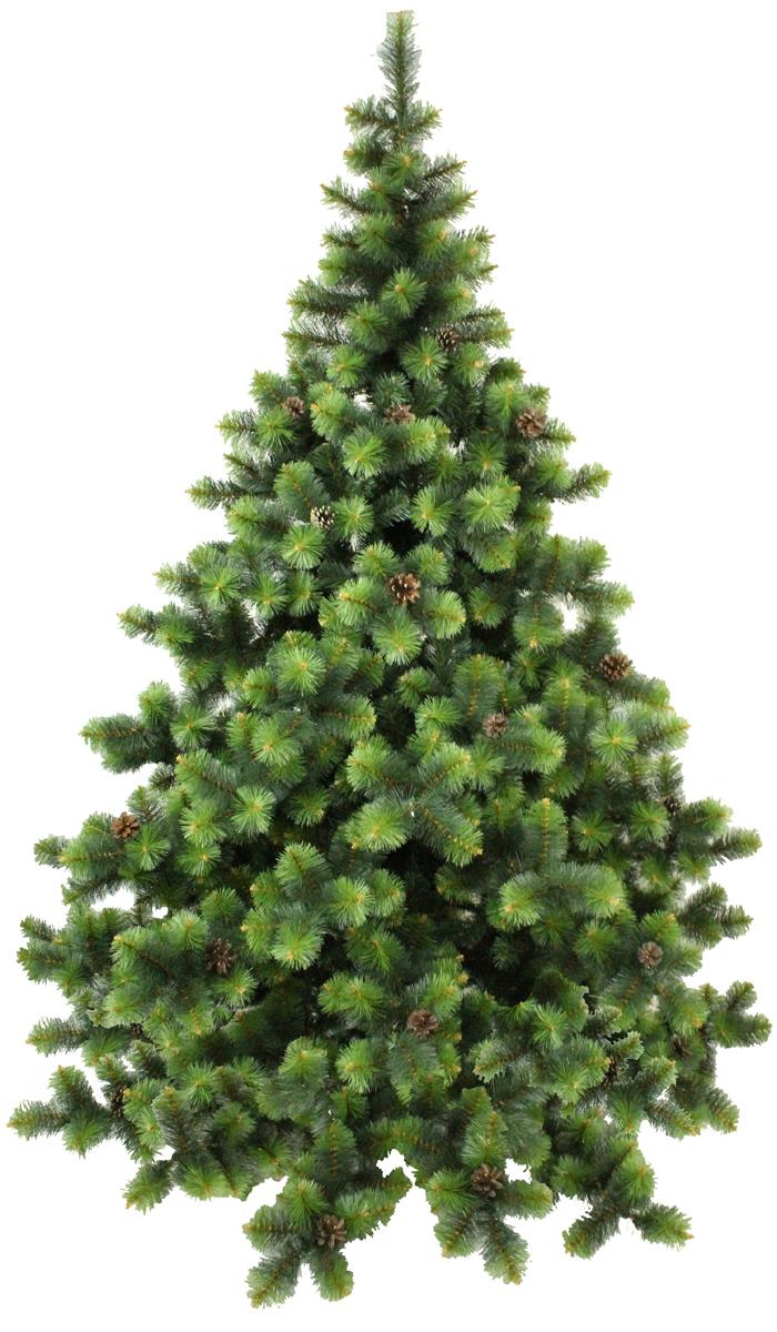 Сосна искусственная Morozco Роял, цвет: зеленый, высота 1,2 м2112Искусственная сосна Роял - прекрасный вариант для оформления вашего интерьера к Новому году. Такие деревья абсолютно безопасны, удобны в сборке и не занимают много места при хранении.Сосна состоит из верхушки, ствола и устойчивой подставки. Сосна быстро и легко устанавливается и имеет естественный и абсолютно натуральный вид, отличающийся от своих прототипов разве что совершенством форм и мягкостью иголок.Сосновые иголочки не осыпаются, не мнутся и не выцветают со временем. Полимерные материалы, из которых они изготовлены, не токсичны и не поддаются горению. Сосна Morozco обязательно создаст настроение волшебства и уюта, а так же станет прекрасным украшением дома на период новогодних праздников.
