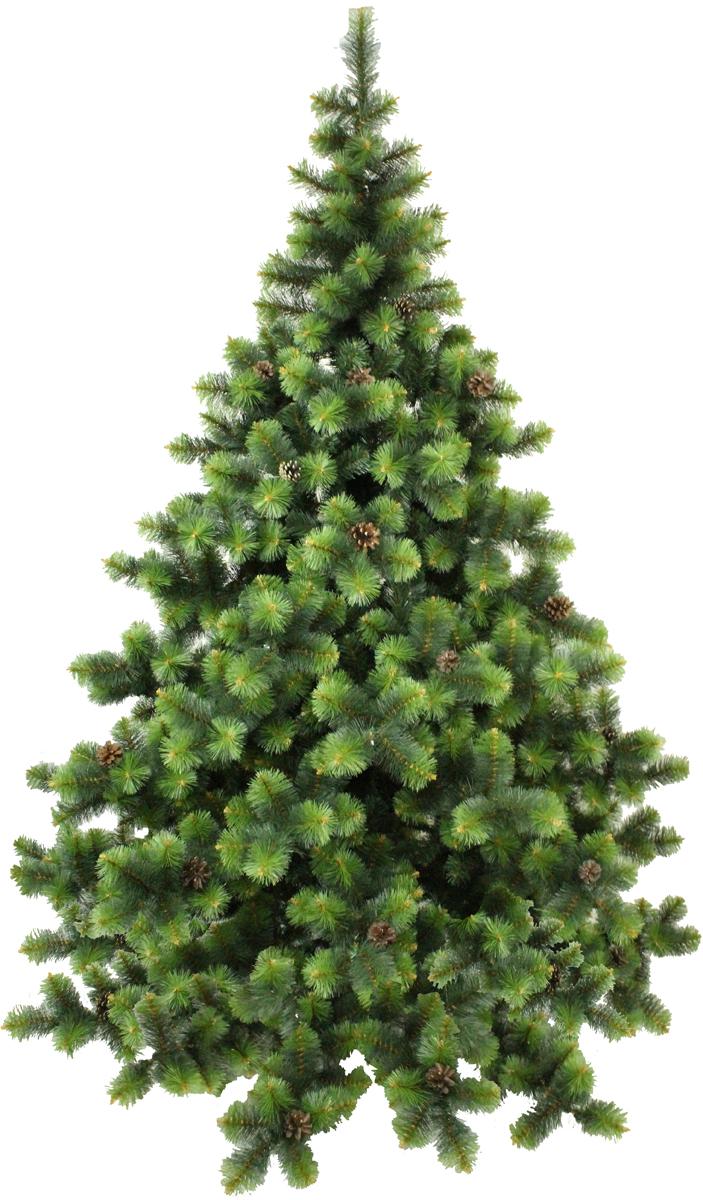 Сосна искусственная Morozco Роял, цвет: зеленый, высота 1,5 м2115Искусственная сосна Роял - прекрасный вариант для оформления вашего интерьера к Новому году. Такие деревья абсолютно безопасны, удобны в сборке и не занимают много места при хранении.Сосна состоит из верхушки, ствола и устойчивой подставки. Сосна быстро и легко устанавливается и имеет естественный и абсолютно натуральный вид, отличающийся от своих прототипов разве что совершенством форм и мягкостью иголок.Сосновые иголочки не осыпаются, не мнутся и не выцветают со временем. Полимерные материалы, из которых они изготовлены, не токсичны и не поддаются горению. Сосна Morozco обязательно создаст настроение волшебства и уюта, а так же станет прекрасным украшением дома на период новогодних праздников.
