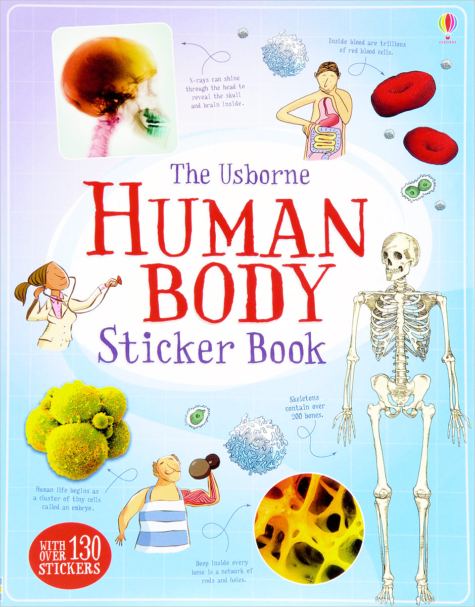 Human Body: Sticker Book amazing adventures sticker book