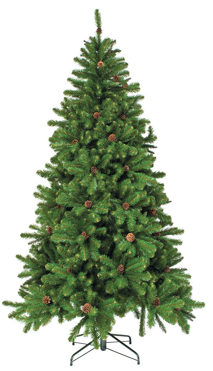 Ель искусственная Triumph Tree Императрица, с шишками, цвет: зеленый, высота 215 см73998 (379737)Искусственная ель Triumph Tree Императрица - прекрасный вариант для оформлениявашего интерьера к Новому году. Такие деревья абсолютно безопасны, удобны в сборке и незанимают много места при хранении. Ель состоит из верхушки, сборного ствола и устойчивойподставки. В комплекте имеются шишки с проволокой, которые можно прикрепить на ветки. Ельбыстро и легко устанавливается и имеет естественный и абсолютно натуральный вид,отличающийся от своих прототипов разве что совершенством форм и мягкостью иголок. Еловые иголочки не осыпаются, не мнутся и не выцветают со временем. Полимерныематериалы, из которых они изготовлены, нетоксичны и не поддаются горению.Ель Triumph Tree Императрица обязательно создаст настроение волшебства и уюта, а такжестанет прекрасным украшением дома на период новогодних праздников. Размер подставки: 56 х 56 см.