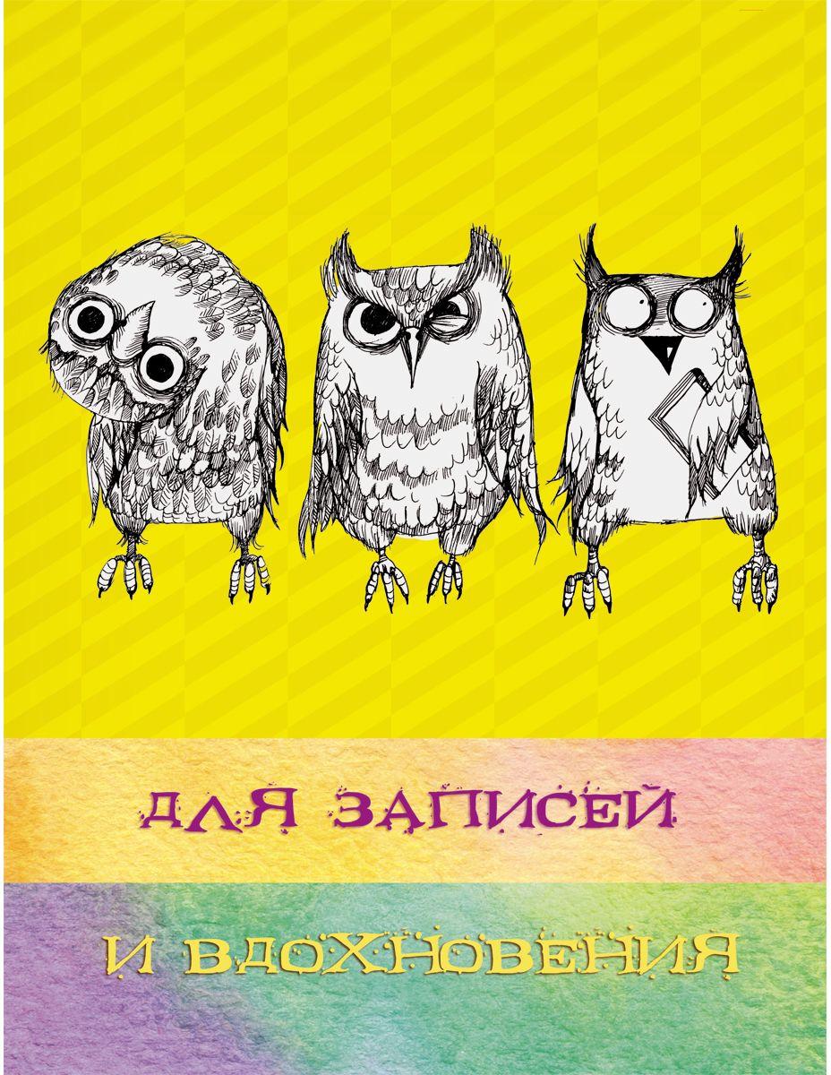 Канц-Эксмо Записная книжка Paper Art Три совы в клетку 96 листов формат А5ЕТИ596134Книга для записей (евротетради) А5 (167х210), 96л. Творческий-диз. Блок