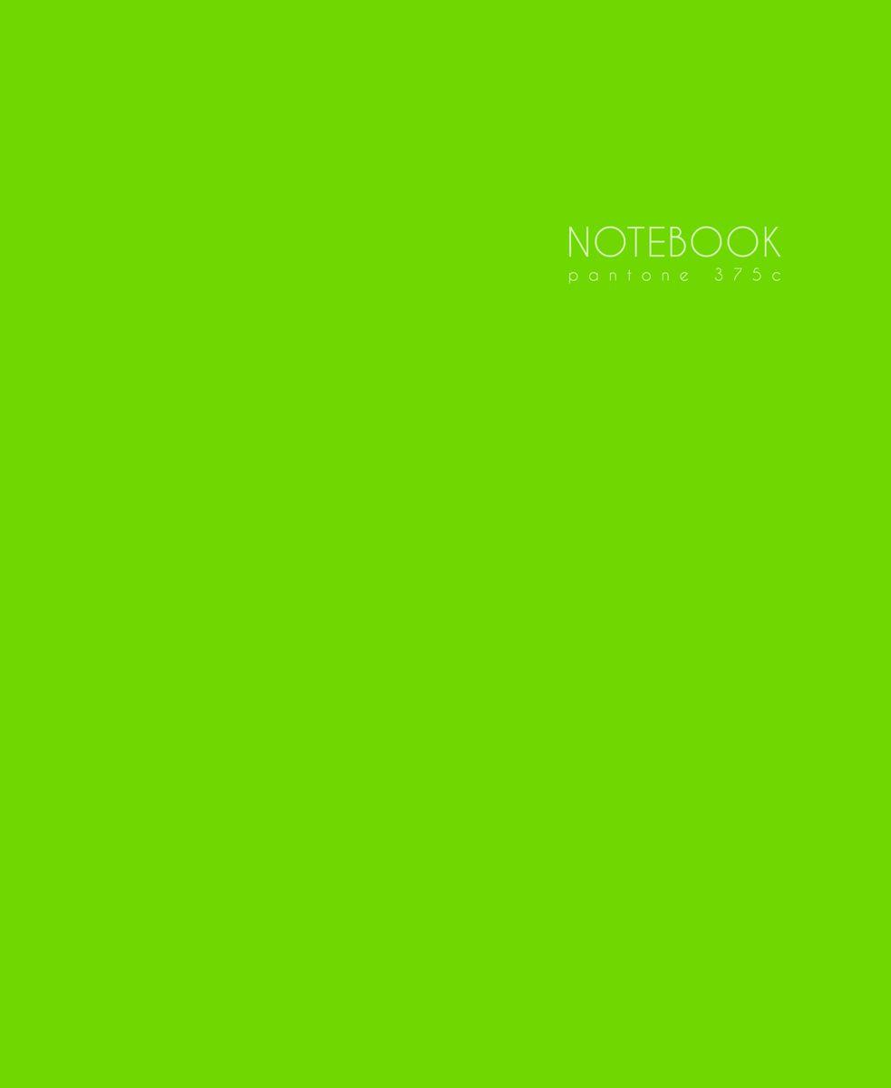 Канц-Эксмо Записная книжка Новая палитра в клетку 96 листов цвет светло-салатовый формат А5ЕТИЛ59665Книга для записей (евротетради) А5 (167х210), 96л.